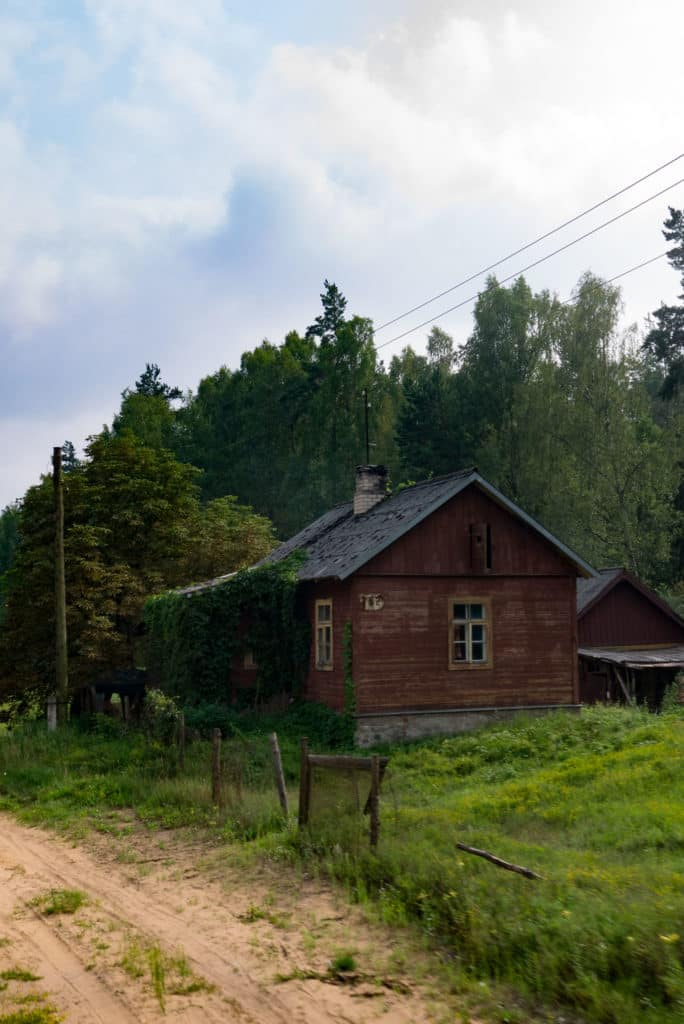 forest and railway in latvia
