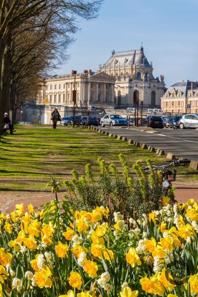 Versailles Castle and flowers