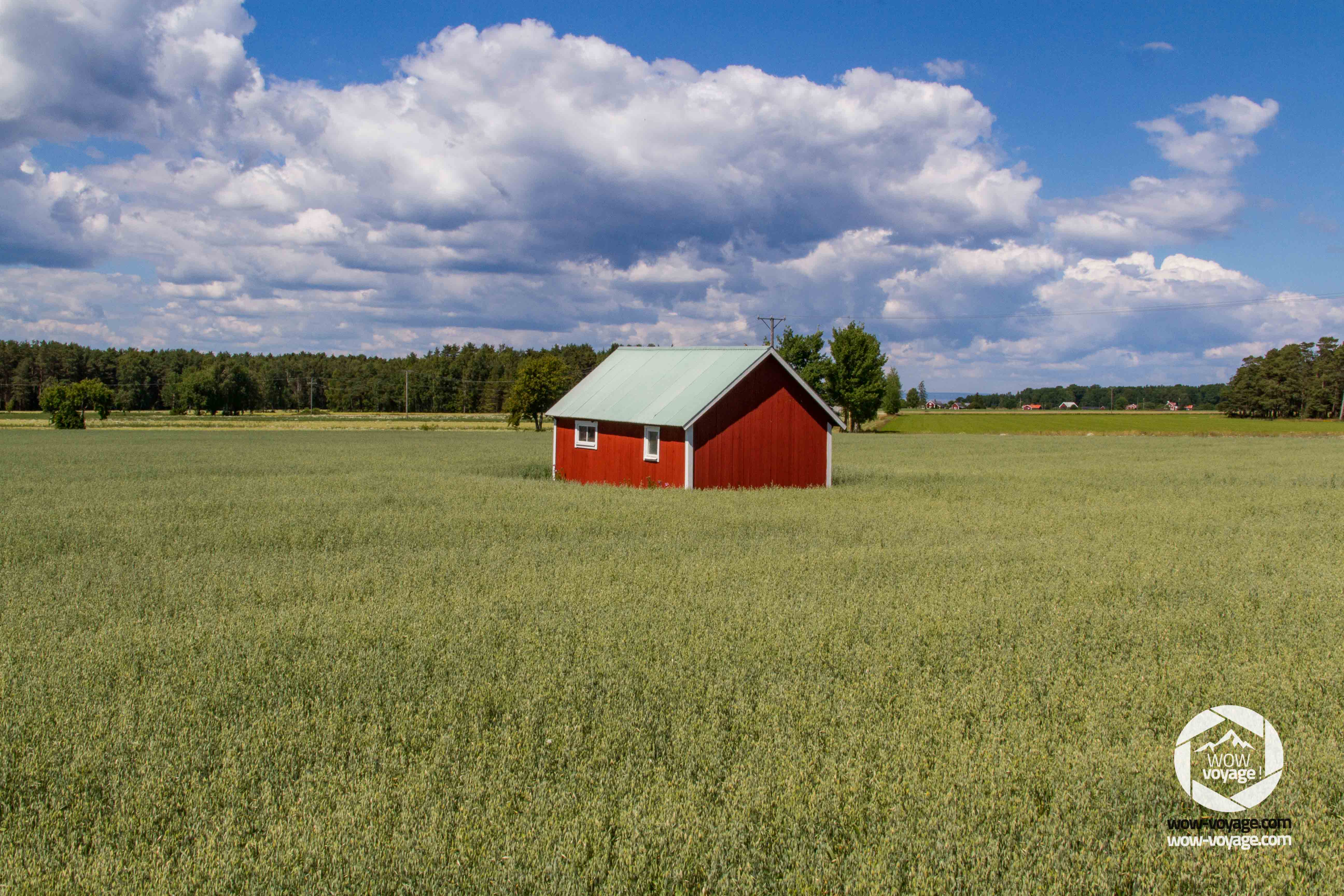 small swedish style house in a field, sweden, Visingsö