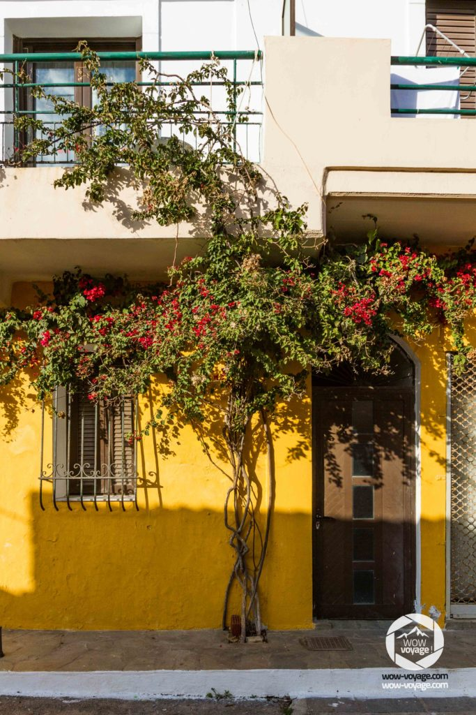 Flowers on a building facade